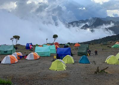 Восхождение на Килиманджаро 2019