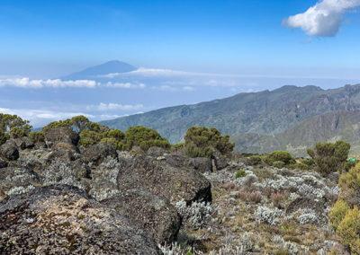 Виды Килиманджаро
