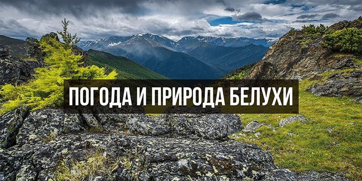 Погода и природа Алтая