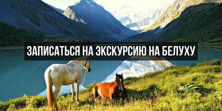 Путешествие на Алтайские горы